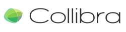 A podcast with Felix Van de Maele, discussing Collibra