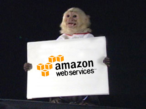 Do We Need A Standardization Around Amazon APIs?