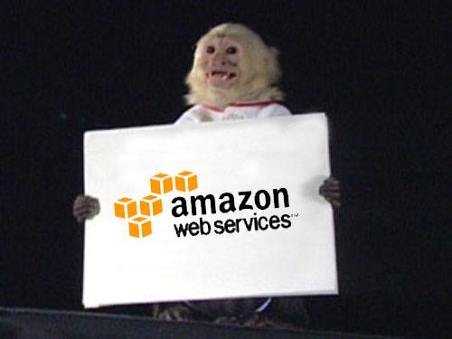 Do We Need A Standardization Around Amazon APIs?