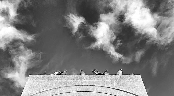 Cloud Watching by Michael Krigsman