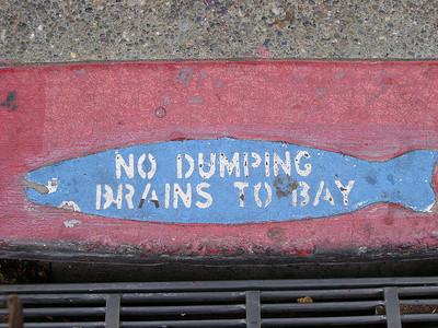 No Dumping Brain to Bay.