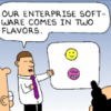 Recruiting End Users For Enterprise Software Applications