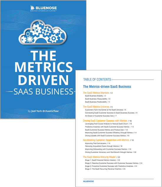 saas customer success metrics ebook