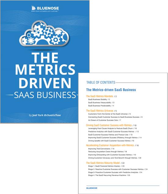 saas customer success metrics ebook