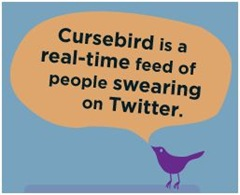 Friday Fun: CurseBird