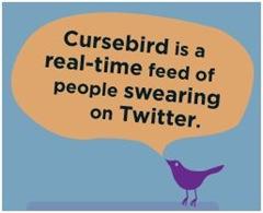 Friday Fun: CurseBird