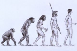Evolutionary v. Intelligent Design Marketers: Which one are you?