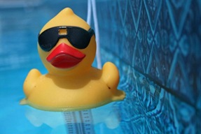 If it Swims Like a Duck and Quacks Like a Duck, then it Probably is a Duck. The Anti-SAP Duck.