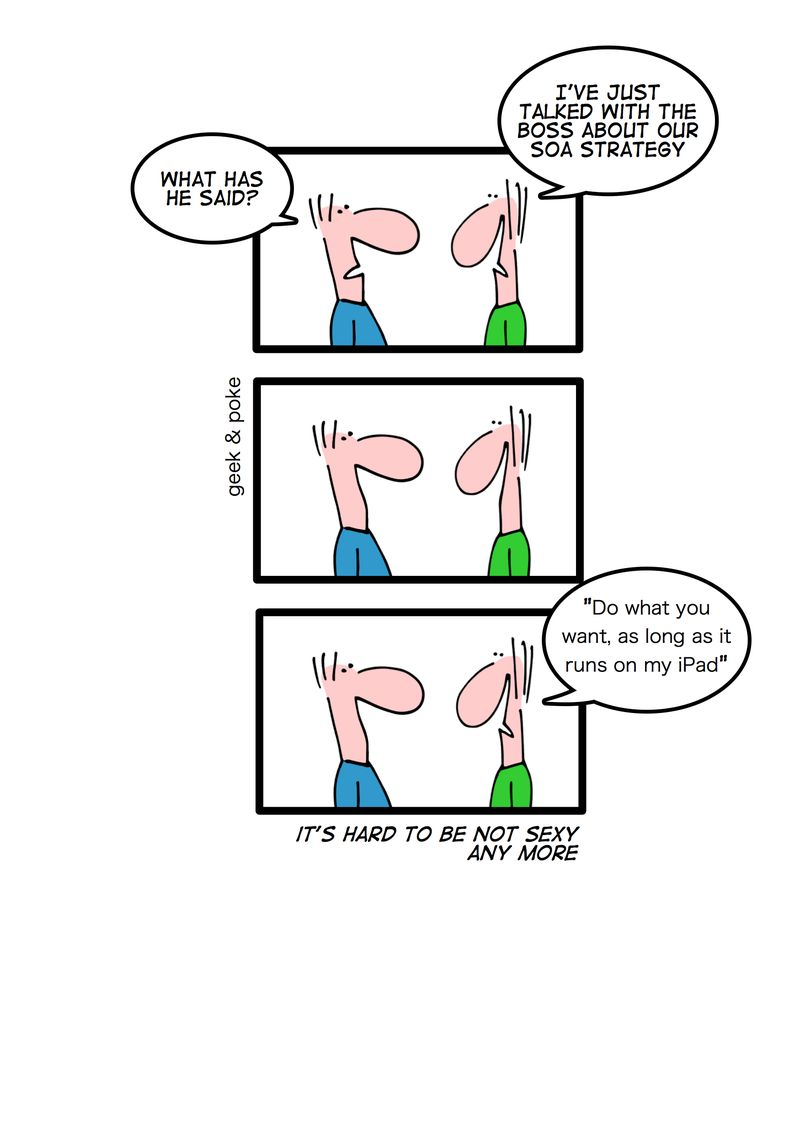Enterprise Software Strategy